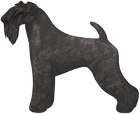Black Kerry Blue Terrier