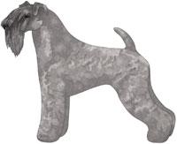 Silver Kerry Blue Terrier